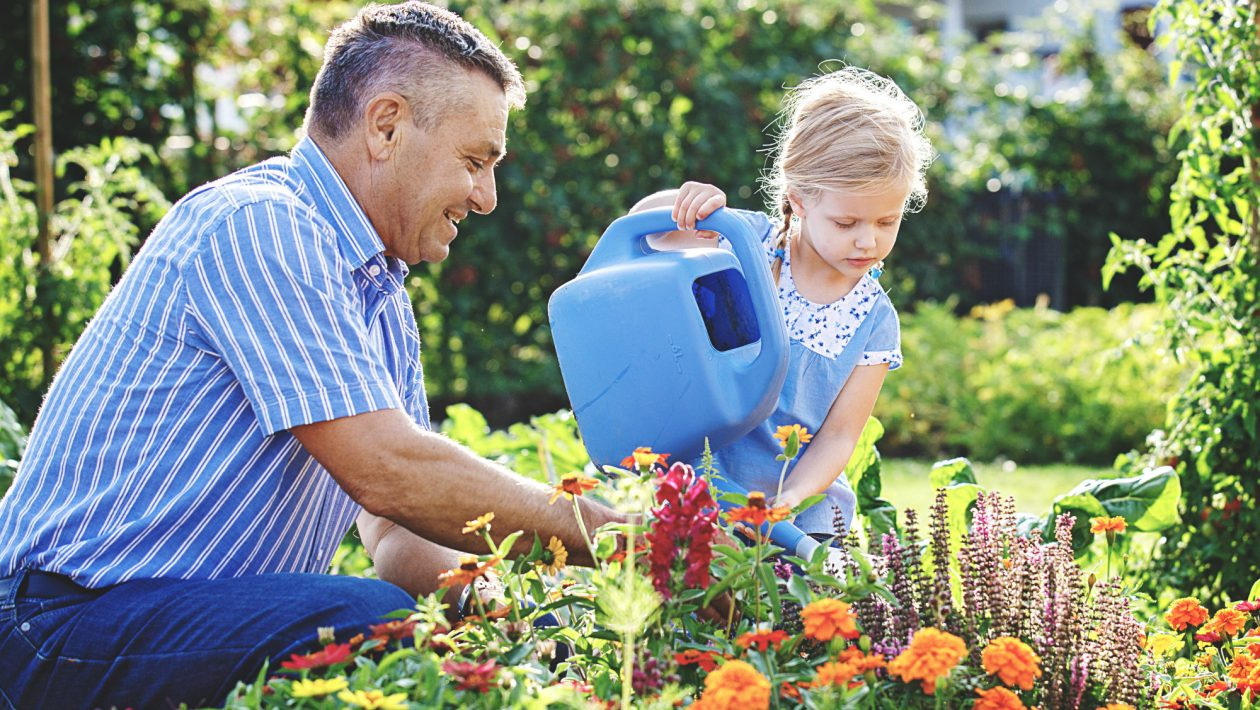7 Essential Garden Maintenance Tips to Keep a Healthy Garden
