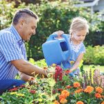7 Essential Garden Maintenance Tips to Keep a Healthy Garden
