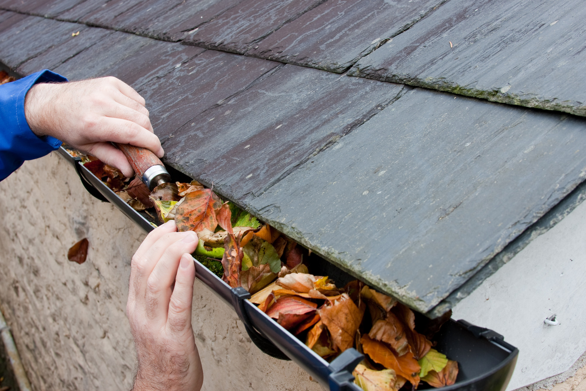 7 Signs That Your Gutters Need to Be Cleaned