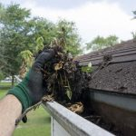 Home Maintenance for Dummies: Seasonal Tasks Homeowners Need to Do