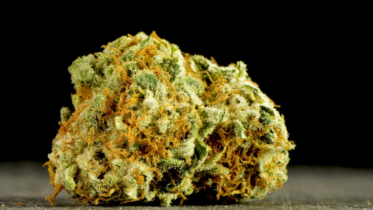 What Is the Strongest Weed Strain of All Time?