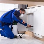 Reasons to Hire a Professional Pest Control Company