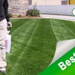 6 Best weed killer for lawns, garden, and walkways